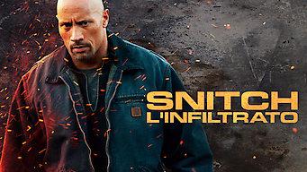 Snitch - L'infiltrato (2013)