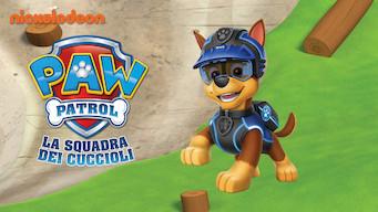 PAW Patrol - La squadra dei cuccioli (2018)