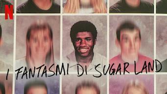 I fantasmi di Sugar Land (2019)
