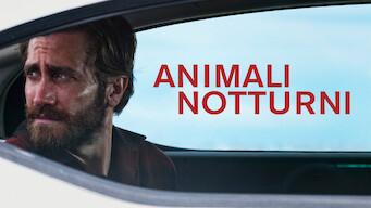 Animali notturni (2016)