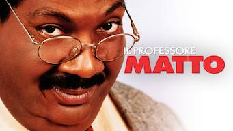 Il professore matto (1996)