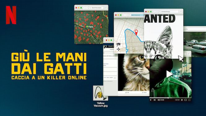 Giù le mani dai gatti: caccia a un killer online