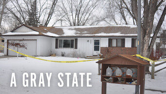 A Gray State (2017)