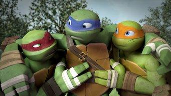 Teenage Mutant Ninja Turtles: Season 3: Vision Quest