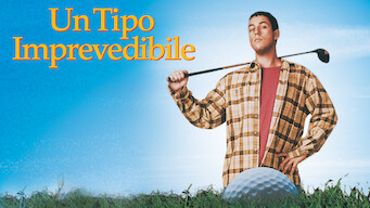 Un tipo imprevedibile (1996)