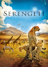 Search netflix Serengeti